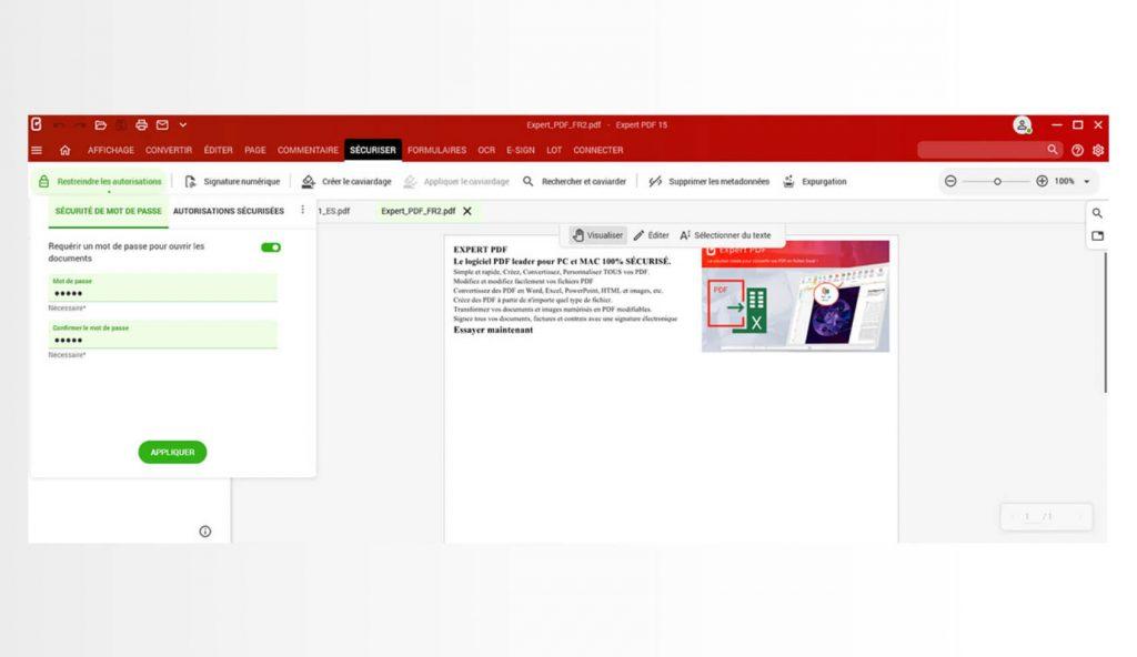 Bescherm uw PDF-bestanden met een wachtwoord en beheer de toegangsniveaus om te voorkomen dat onbevoegden uw documenten raadplegen.